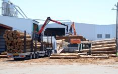 九州各地より木材搬入