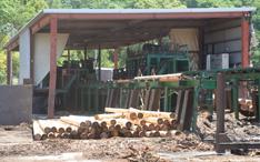 木材皮剥ぎ機