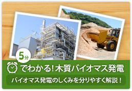 5分でわかる!木質バイオマス発電